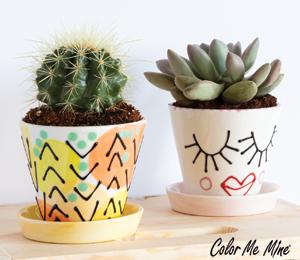 Princeton Cute Planters