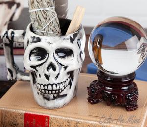 Princeton Antiqued Skull Mug